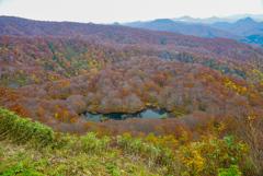 鳥海山近辺で秋探し2