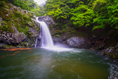 紀伊半島滝巡り20  清納の滝