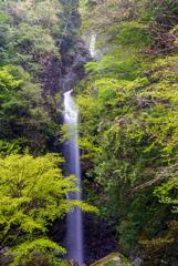 紀伊半島滝巡り21  宮の滝