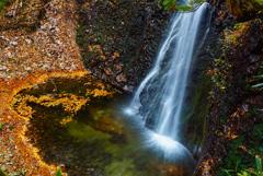 滝壺に落ち葉