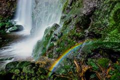 ひっそりと虹