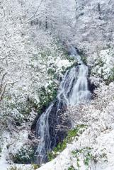 冬の滝旅 3  七滝