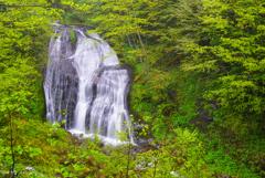 白糸の滝 (岐阜県下呂市小坂町)