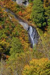 2021年10月滝巡り2 黒滝
