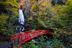 紅葉シーズン滝巡り6  不動の滝