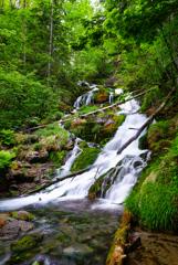 北海道旅行5  白金不動の滝