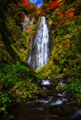 紅葉シーズン滝巡り7  くろくまの滝