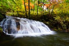 紅葉シーズン滝巡り3 杉滝