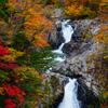 鳥海山近辺で秋探し5