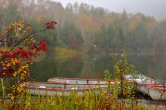 霧に煙る木戸池