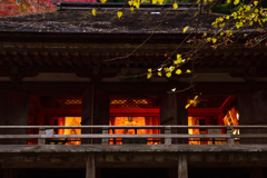 秋の室生寺ーⅣ