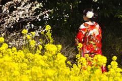 春の訪れーⅢ