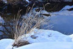 入間川雪景ーⅡ