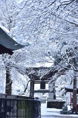 雪の高倉寺ーⅡ