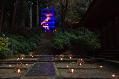 秋の室生寺ーⅤ