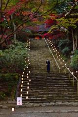秋の室生寺ーⅡ
