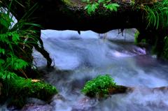 湧水渓流ーⅢ