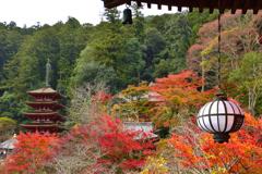 秋の長谷寺ーⅡ