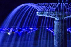 光と水のハーモニー