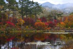 秋の彩り<一沼>