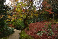 秋の詩仙堂ーⅢ