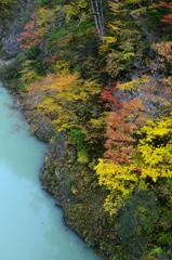 錦秋の渓谷ーⅣ
