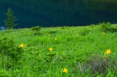 夏の湖畔-Ⅱ