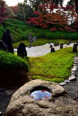 波心の庭-1