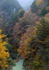 錦秋の渓谷ーⅡ
