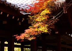 錦秋の寺ーⅡ