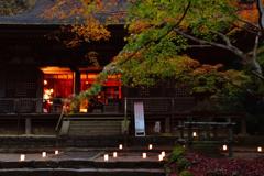 秋の室生寺ーⅢ