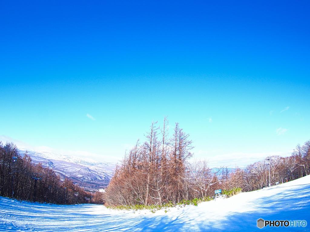 パノラマ スキー 場 八幡平