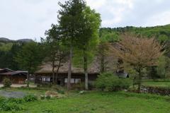 山里の春4