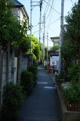 鎌倉の裏町