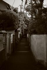 鎌倉の裏町2