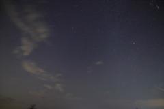 しし座流星群2
