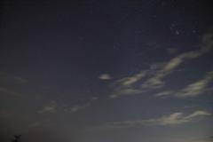 しし座流星群1