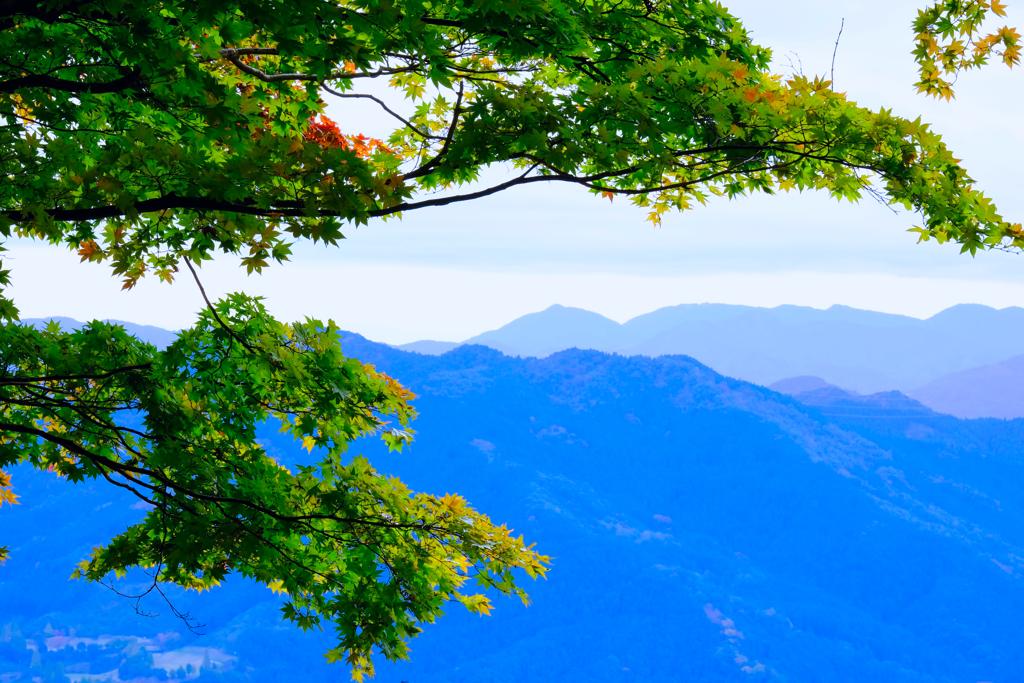 桜山公園⑦