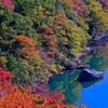 高津戸峡の紅葉④
