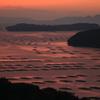 朝日に染まる虫明湾