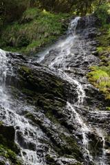 岩肌を流れる