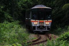 森を走る電車