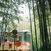 竹藪を駆ける列車