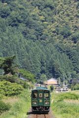 緑の列車と緑の山