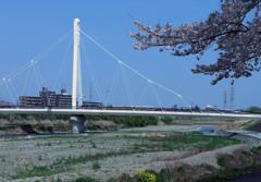 ふれあい橋ー東京浅川