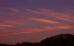 今日の夕焼雲