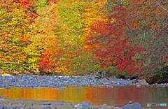 小川に色を落として