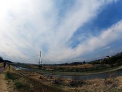 ふれあい橋の春-1