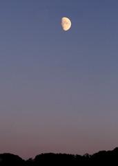 10月の上弦の半月