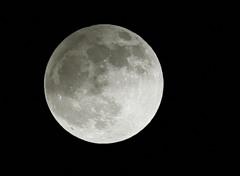 半影月食の月